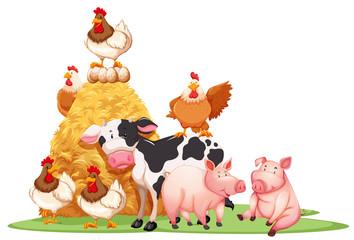 Farm animals with haystack