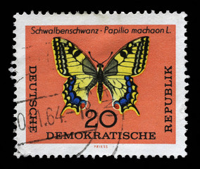 Stamp printed in DDR shows Schwalbenschwanz Papilio machaon L butterfly. The largest butterfly in Germany with a wingspan from 50 to 75 millimeters.