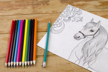 the horse drawn with a pencil