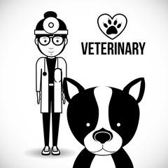 vet clinic design