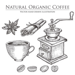 Coffee mill ,bean, seed, fruit, cinnamon, star anise, cup. Hot natural organic caffeine drink set. Hand drawn vector illustration on white background.