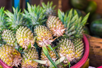 Fresh pineapples for sale