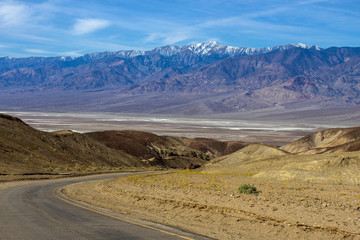 Death Valley scenic drive with wildflowers and snowy peaks
