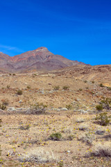 "Death Valley NP ""Corkscrew Peak"" in spring"