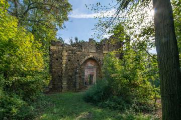 Ruine bei Pillnitz