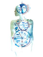 Fotobehang Schilderingen biological clock