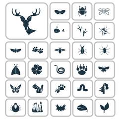 Set of twenty seven nature icons