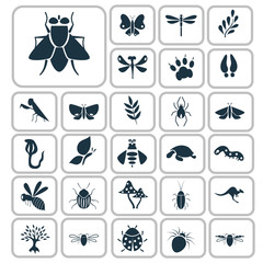 Set of twenty seven nature icons