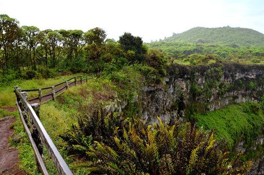 Vulkan und Krater mit tropischen Bäumen bewachsen