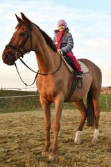 Enfant est assis sur un cheval