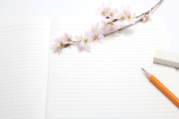 桜 筆記用具