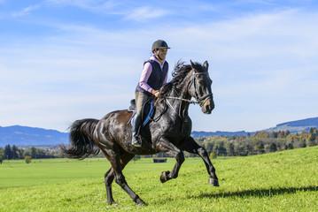 galoppierendes Pferd mit Reiterin