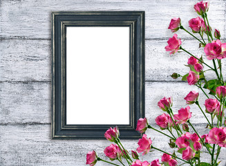 Pink roses and photo frame