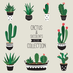 Cacti and succulents vector collection   Set of nine decorative houseplants