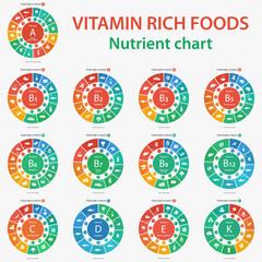 Vitamin rich foods. Nutrient chart. Foods high in vitamins. Vector illustration diagram chart set of vitamins A, B1, B2, B3, B5, B6, B7, B9, B12, C, D, E, K