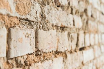 Old brick wall (selective focus)