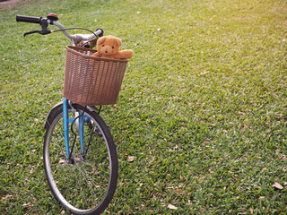 Teddy bear in basket bicycle at park