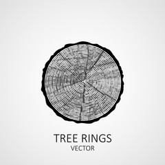 Annual tree rings. Saw cut tree trunk. Vector wood texture