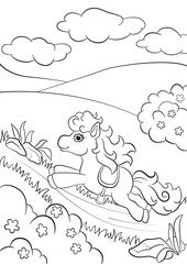 Coloring pages. Little cute pony running along the road in the field.