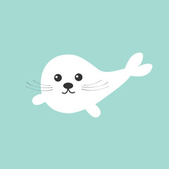 Harp baby seal pup with mustaches.  Cute cartoon character. Blue background. Flat design