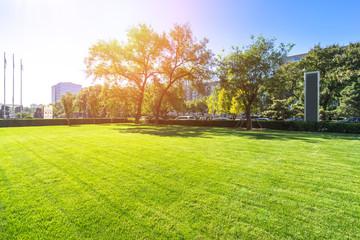beatiful grassland in beijing in sunny day