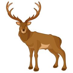 Cartoon smiling deer