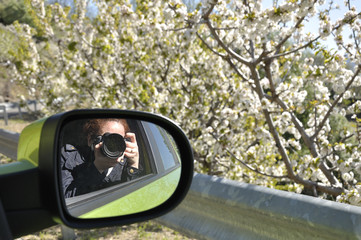 Woman reflected in the rearview mirror of a car taking a picture of the cherry trees in bloom on a spring day