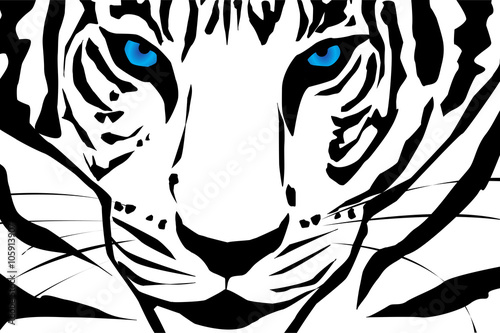 Vector silhouette of tiger.