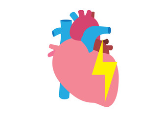 flat real heart illustration vector design