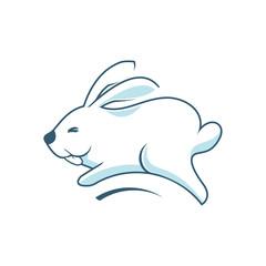Jumping Rabbit Bunny Cony Hare Happy Funny Cute