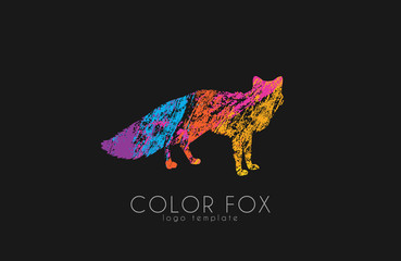 Fox logo. Color fox design. Animal logo.