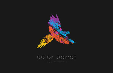 Parrot logo design. Color parrot. Bird logo. Exotic logo.
