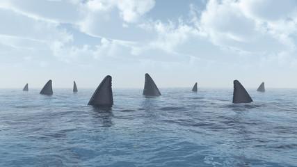 Ansammlung von Haien