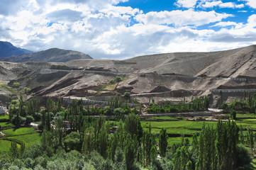 Small farm in the valley ,Ladakh,Jammu - kashmir,India.