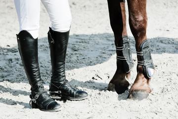 équitation jambes pied pattes cheval cavalier botte Papier Peint
