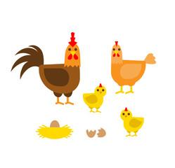 farm birds family cartoon flat illustration. rooster hen chicken egg nest isolated on white background
