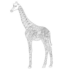 Anti stress coloring page Zentangle Giraffe doodle on white background. Outlined path easy to edit.