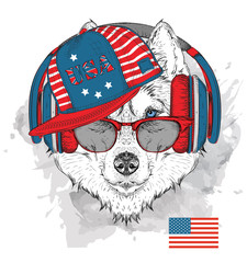 Illustration of husky in the glasses, headphones and in hip-hop hat with print of USA. Vector illustration.