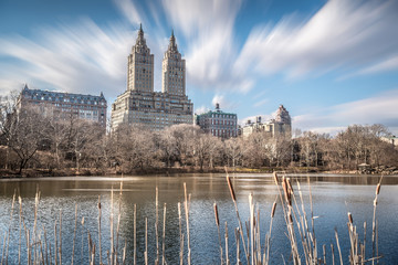 High rise buildings around Central Park with blurry foreground and moving clouds