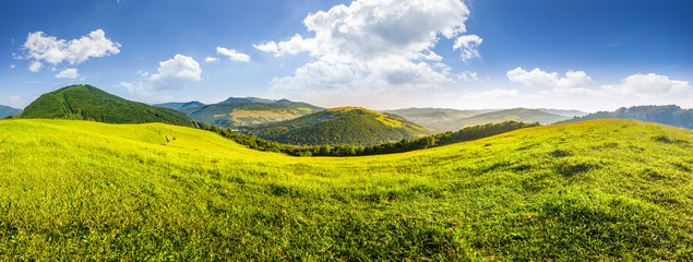hillside meadow in high mountains