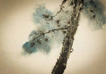 Pine trunk and branches