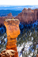 Stone hoodoo in Bryce Canyon National Park