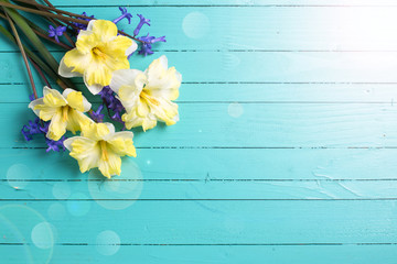 Bright colorful yellow and blue spring flowers on green  painted
