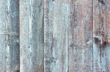 Grungy blue painted wooden fence texture.