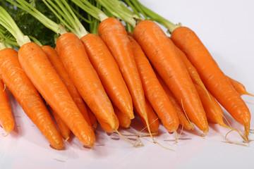 carrot food
