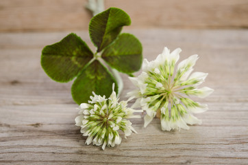 four-leaf clover with flowers on wooden background