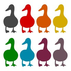 The silhouette of a goose icons set