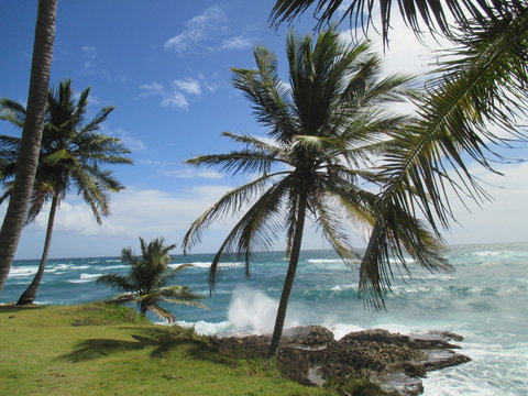 Punta Balandra
