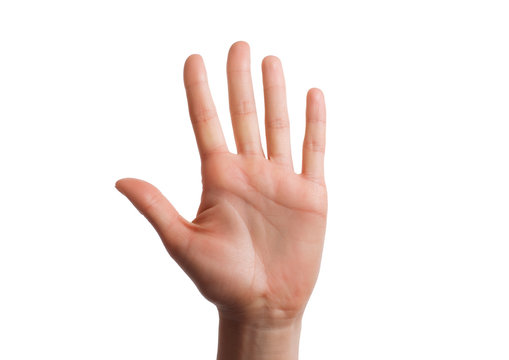 Isolated hand shows the number five. Stop concept with hand up