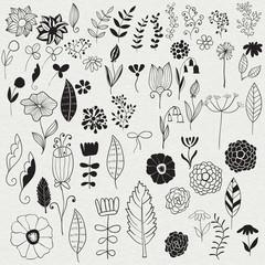 Vector Spring Floral Design Elements